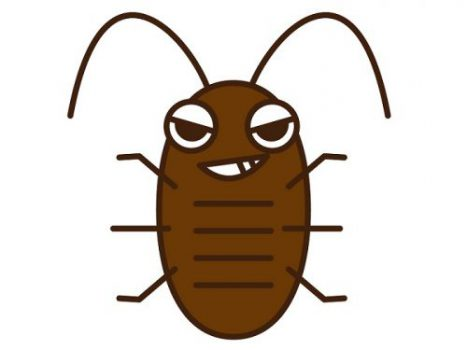 ゴキブリは夜行性の害虫!被害に遭わないための「正しい対処法」