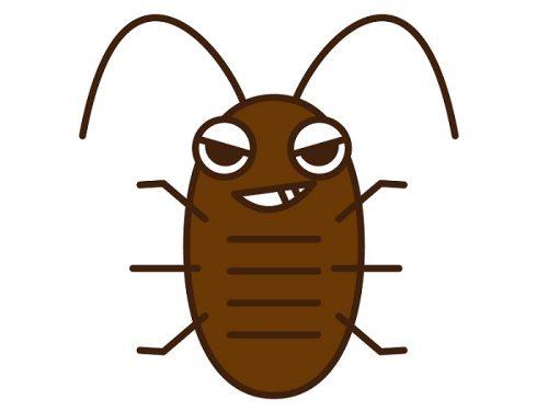 ゴキブリを食べる虫やペットが集結!賢くゴキブリを駆除するには