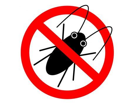 ゴキブリ1匹の放置は200倍の後悔を呼ぶ……ゴキ対策の正解とNG