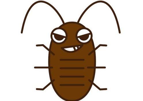 ゴキブリ駆除にアルコールが効くのは本当だった!理由や衛生面は?