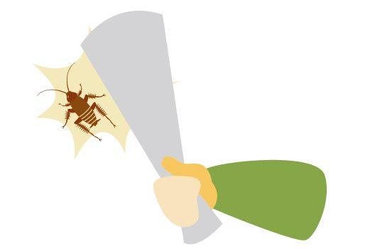 白いゴキブリは脱皮したて!決してよい存在ではないので即駆除が正解
