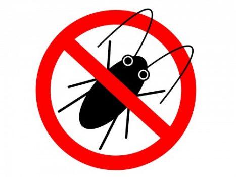 ゴキブリがトイレに出現したときに気を付けること