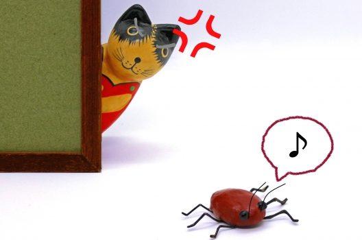 ゴキブリが人を噛むのは攻撃ではない!?理由と今すぐできる対策とは